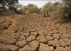 Drought_2
